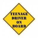 Could Teenagers Be The Answer To Truck Driver Shortages?